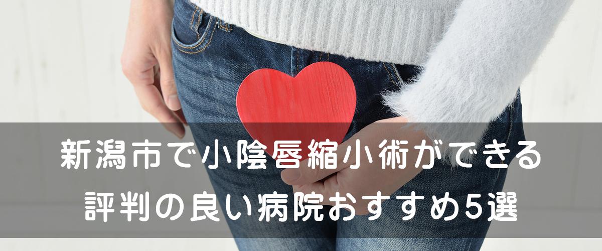 新潟市で小陰唇縮小術ができる評判の良い病院 おすすめ5選