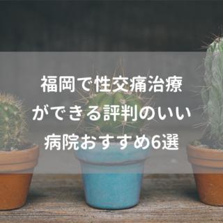 福岡で性交痛治療ができる評判のいい病院おすすめ6選