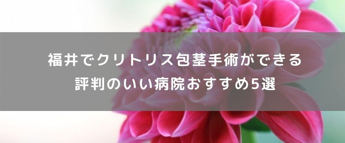 福井でクリトリス包茎手術ができる評判のいい病院おすすめ5選