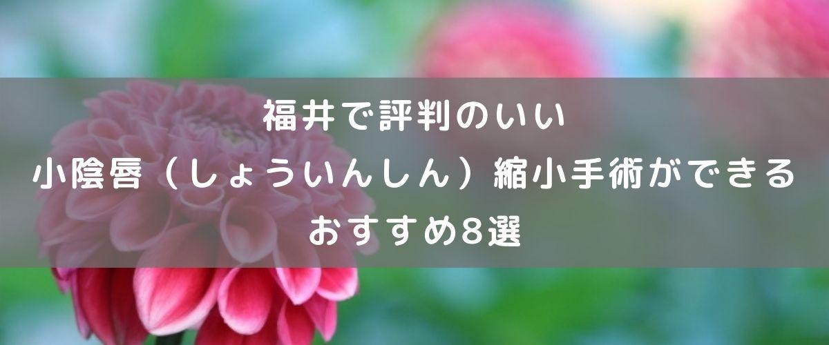 福井県で評判のいい小陰唇(しょういんしん)縮小手術ができる おすすめ8選