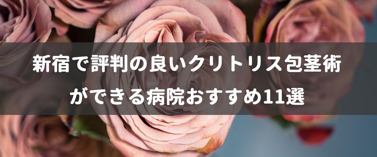 新宿で評判の良いクリトリス包茎術ができる病院おすすめ11選