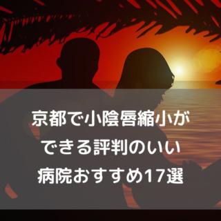 京都で小陰唇縮小ができる評判のいい病院おすすめ16選