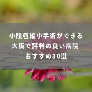 大阪で小陰唇縮小手術ができる評判の良い病院 おすすめ30選