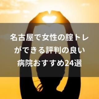 名古屋で女性の腟トレができる評判の良い病院おすすめ24選