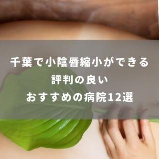 千葉で小陰唇縮小ができる評判の良いおすすめの病院12選