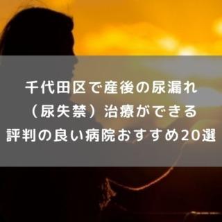 千代田区で産後の尿漏れ(尿失禁)治療が できる評判の良い病院おすすめ20選