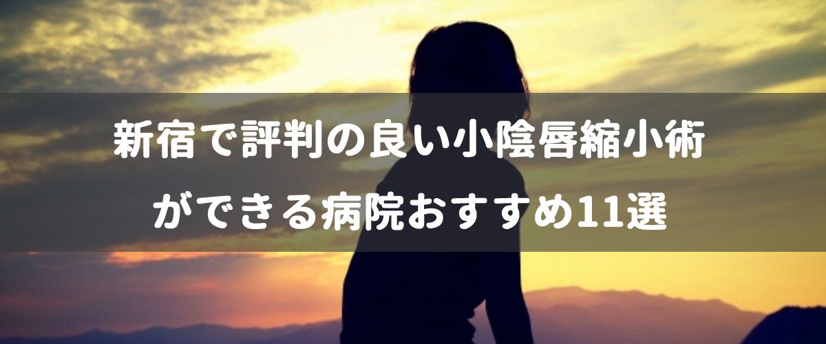 新宿で評判の良い小陰唇縮小術ができる病院おすすめ11選