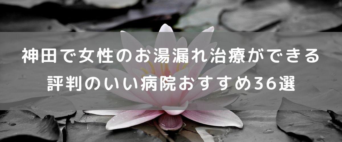 神田で女性のお湯漏れ治療ができる評判の良い病院おすすめ36選