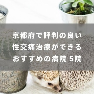 京都府で評判の良い性交痛治療ができるおすすめの病院 5院
