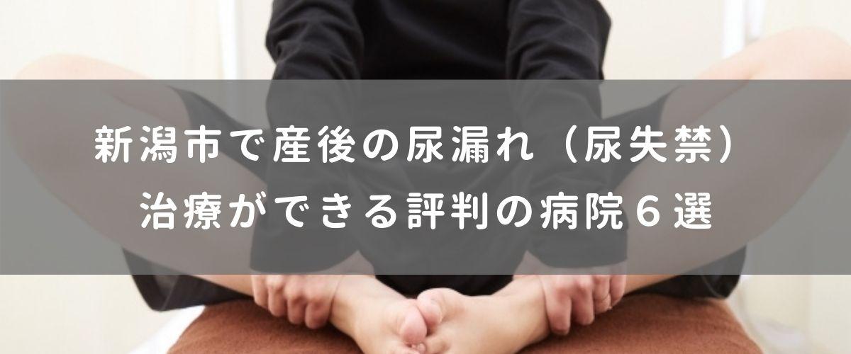 新潟市で産後の尿漏れ(尿失禁)治療ができる評判の病院6選