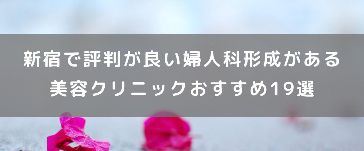 新宿で評判の良い婦人科形成がある美容クリニックおすすめ19選