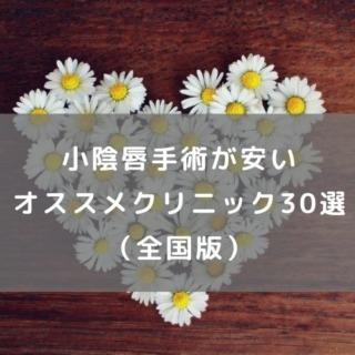 小陰唇手術が安いオススメクリニック30選(全国版)