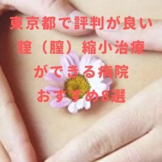 東京都で評判が良い 腟(膣)縮小治療 ができる病院 おすすめ8選