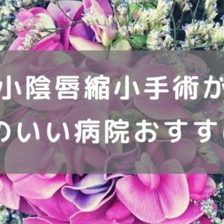"""""""富山で小陰唇縮小手術ができる評判のいい病院おすすめ7選 """""""